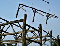 Beechwoods barns faq 39 s about barn frames barn pests for How to treat barn wood for bugs